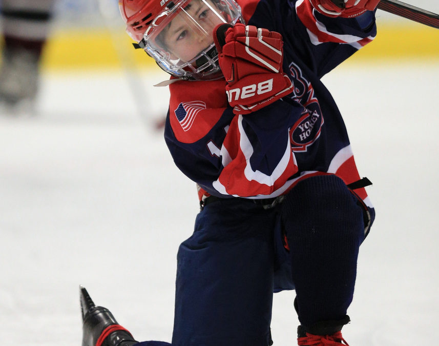 Squirt Tier IV State Championships (Quincy Youth Hockey)