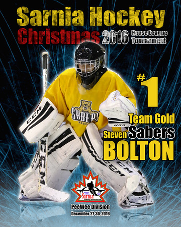 Sarnia Hockey Association House League Tournament
